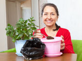 Woman works with  flower pots  — Stock Photo
