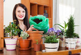 Happy woman transplanting potted flowers   — Stock Photo