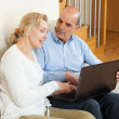 Happy mature couple with laptop — Stock Photo #48991871