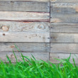 Wooden fence with  grass   — Stockfoto #48992369