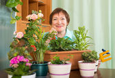 Grandmother with flowers at home — Stock Photo