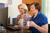 Two aged collegues with PC — Stock Photo