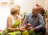 Female florist with client — Stock Photo
