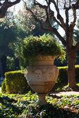 Park of Pedralbes Royal Palace. Barcelona — Stock Photo