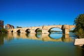 Bridge of Lions over Ebro river  — Photo