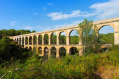 Roman aqueduct in  forest. — Stock Photo
