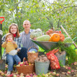 Happy  family with vegetables harvest — Stock Photo #50778555