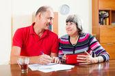 Happy senior couple calculating  budget — Stock Photo