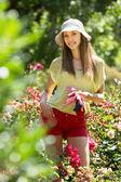 gardener standing near roses — Stock Photo
