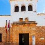 Museum of Dulcinea in El Toboso — Stock Photo #50928129