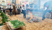 Cooking calsot on bonfire during Calcotada in Valls — Stock Photo