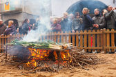 Cooking calsot on bonfire during Calcotada — Stock Photo