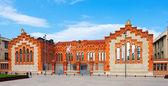 Rovira ben virgili üniversitesi — Stok fotoğraf