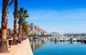 Port with yachts and embankment. Alicante — Stock Photo
