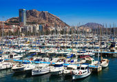 Harbour with yachts and Castle. Alicante — Stock fotografie