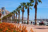 Embankment in Alicante — Stock Photo