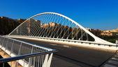 Puente del Hospital over Segura river. Murcia, Spain — Stock Photo