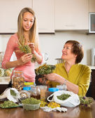 Two women with dried herbs — Stock Photo