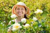 Happy mature woman with  roses — Stock Photo