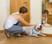 женщина принимая собаку на прогулку — Стоковое фото