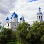 Monastery in Bogolyubovo — Stock Photo #5713108