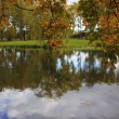 Lake in Autumn - Stock Photo