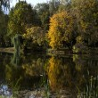 Autumn landscape of lake - Stock Photo