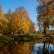Autumn landscape of lake — Stock Photo #13869713