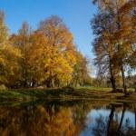 Autumn landscape of lake — Stock Photo #13869713