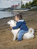 The kid sits on a dog — Stock Photo