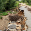 Collapse of paved road in forest — Stock Photo #37277807
