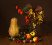 Still life of pumpkins and apples — Stock Photo