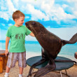 Boy and seal — Stock Photo