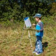 Boy draws a picture — Stock Photo #31217063