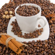 Coffee beans with spice  and cup — Stock Photo