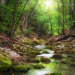 Stock Photo: River deep in mountain forest