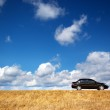 Car on meadow — Stock Photo