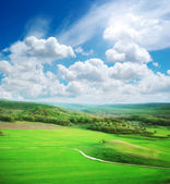 Green meadow in mountain — Stock Photo