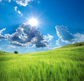 山の緑の牧草地. — ストック写真