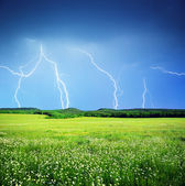Lightning in meadow — Stock Photo