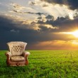 Stock Photo: Chair on a green meadow