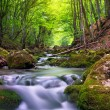 River in mountain forest. - Stock Photo