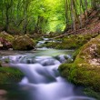 Foto Stock: River in mountain forest.