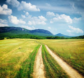 Road lane in mountain meadow. — Stock Photo