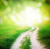 Camino al sol — Foto de Stock