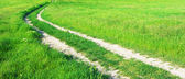 Lane in meadow — Stockfoto
