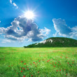Green meadow in mountain — Stock Photo #26019999