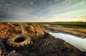 生态问题 — 图库照片