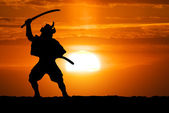 Samurai on sunset — Stock Photo