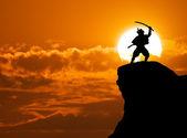Samurai on top — Stock Photo